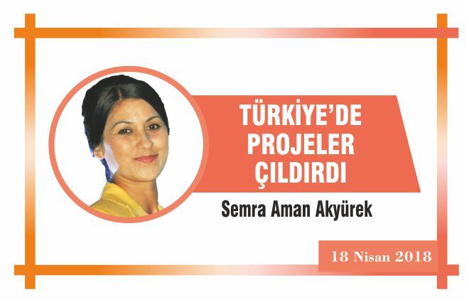 TÜRKİYE'DE PROJELER ÇILDIRDI