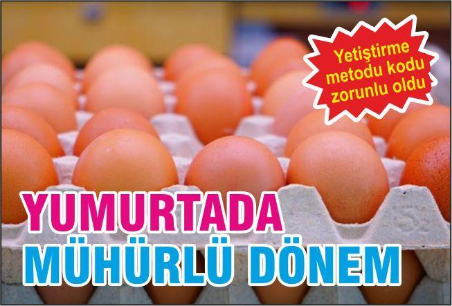 YUMURTA'DA MÜHÜRLÜ DÖNEM