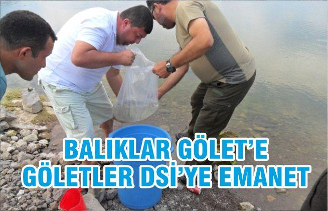 BALIKLAR GÖLET'E GÖLETLER DSİ'YE EMANET