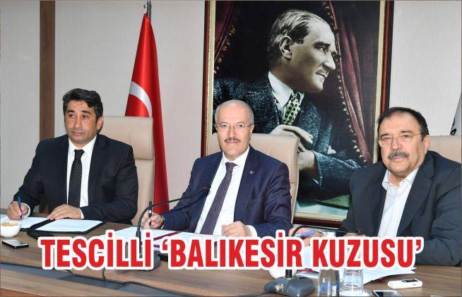 TESCİLLİ 'BALIKESİR KUZUSU'
