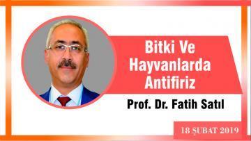 Bitki ve Hayvanlarda Antifiriz