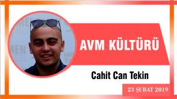 AVM KÜLTÜRÜ