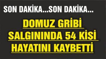 DOMUZ GRİBİ SALGINI ARTTI 54 KİŞİ HAYATINI KAYBETTİ!