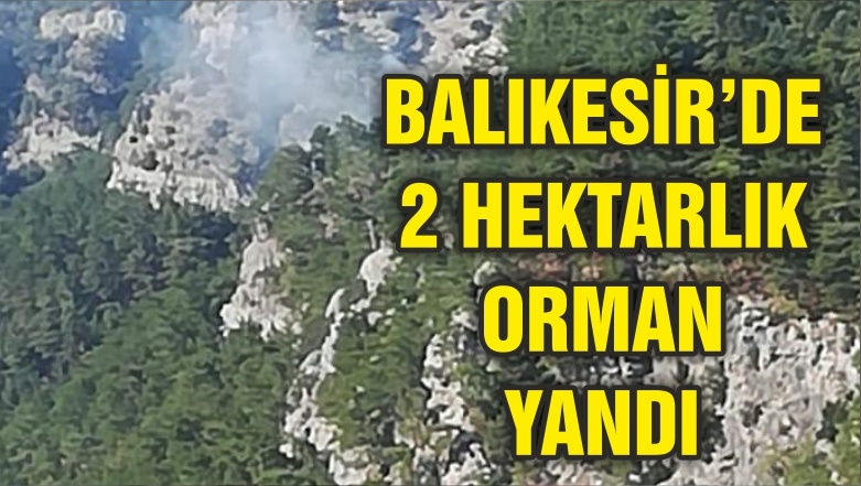 BALIKESİR'DE 2 HEKTARLIK ORMAN YANDI
