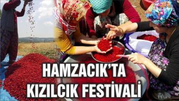 HAMZACIK'TA KIZILCIK FESTİVALİ