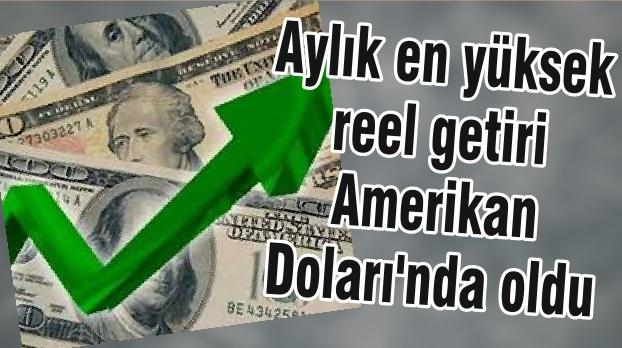 Aylık en yüksek reel getiri Amerikan Doları'nda oldu