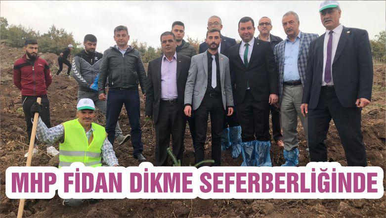 MHP FİDAN DİKME SEFERBERLİĞİNDE