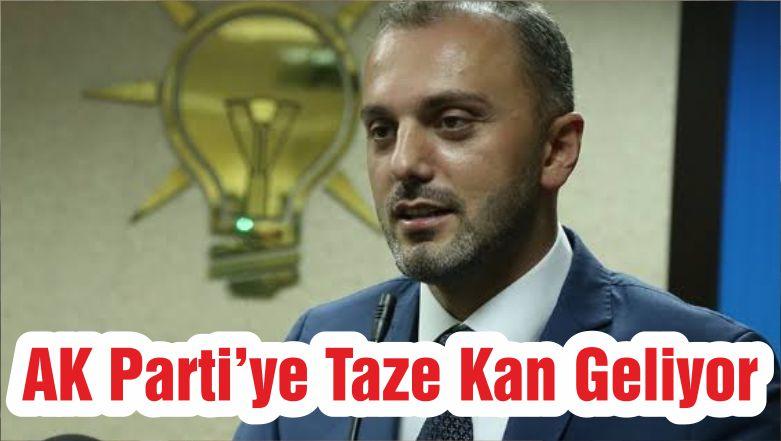 AK Parti'ye Taze Kan Geliyor