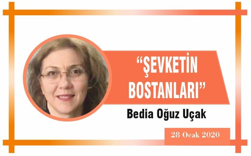 """""""ŞEVKETİN BOSTANLARI"""""""