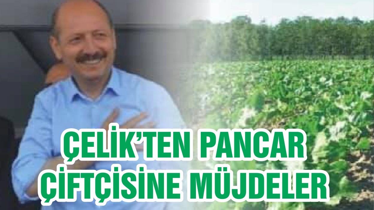 ÇELİK'TEN PANCAR ÇİFTÇİSİNE MÜJDELER