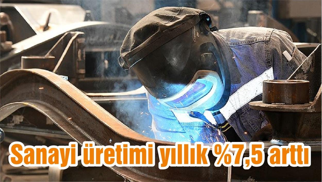 Sanayi üretimi yıllık %7,5 arttı