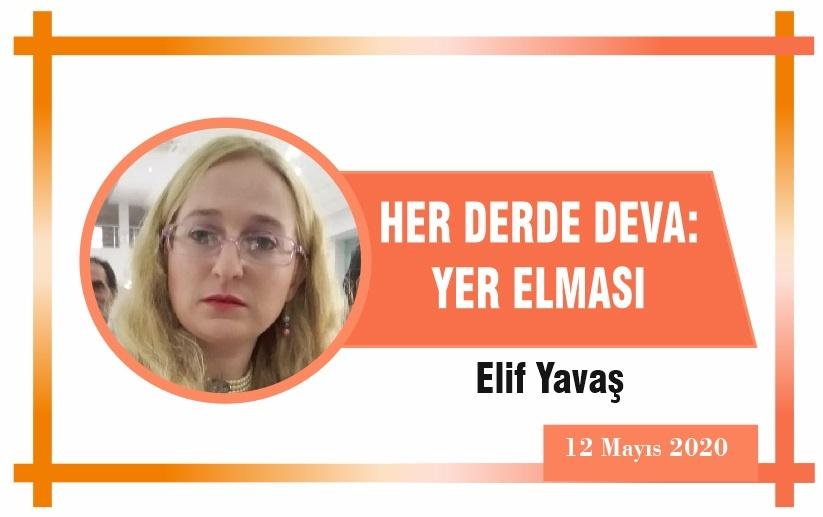 HER DERDE DEVA: YER ELMASI