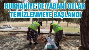 BURHANİYE'DE YABANİ OTLAR TEMİZLENMEYE BAŞLANDI