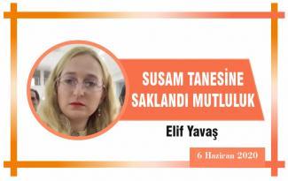SUSAM TANESİNE SAKLANDI MUTLULUK