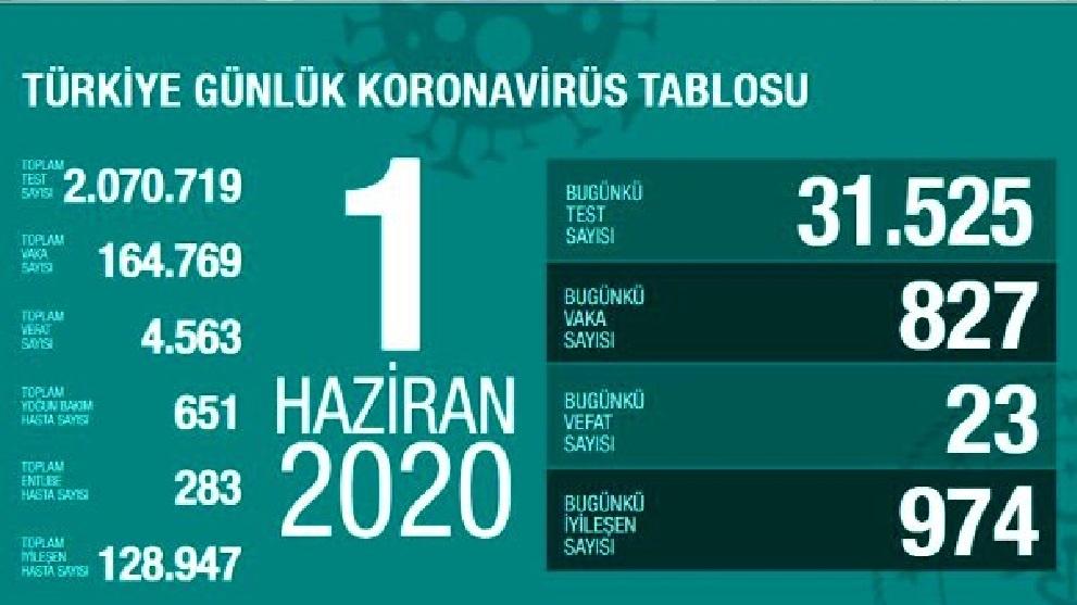 Türkiye'de 1 Haziran günü koronavirüsten ölenlerin sayısı 23 oldu, 827 yeni vaka tespit edildi