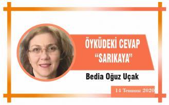 """ÖYKÜDEKİ CEVAP """"SARIKAYA"""""""