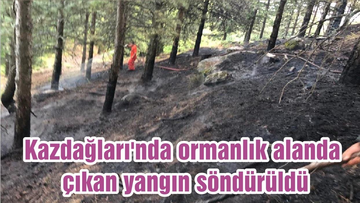 Kazdağları'nda ormanlık alanda çıkan yangın söndürüldü