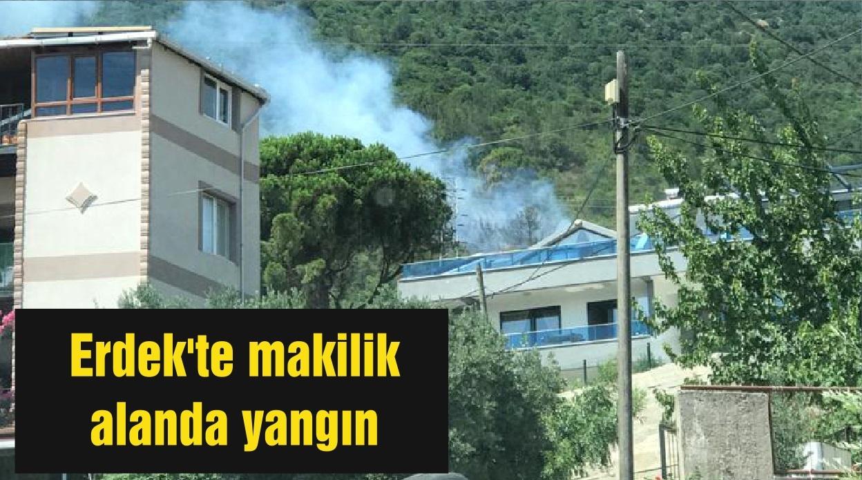 Erdek'te makilik alanda yangın
