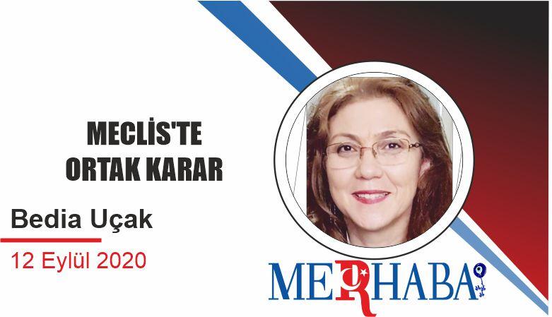 MECLİS'TE ORTAK KARAR