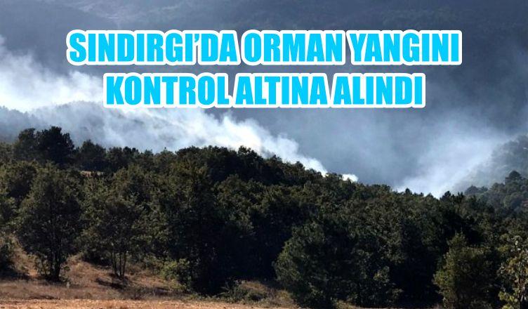 SINDIRGI'DA ORMAN YANGINI KONTROL ALTINA ALINDI