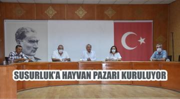 SUSURLUK'A HAYVAN PAZARI KURULUYOR