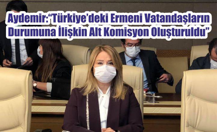 """Aydemir: """"Türkiye'deki Ermeni Vatandaşların Durumuna İlişkin Alt Komisyon Oluşturuldu"""""""
