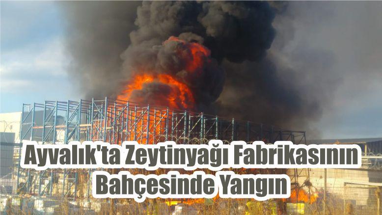 Ayvalık'ta Zeytinyağı Fabrikasının Bahçesinde Yangın