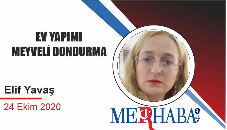 EV YAPIMI MEYVELİ DONDURMA