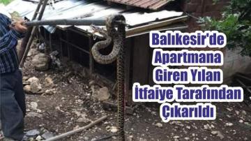 Balıkesir'de Apartmana Giren Yılan İtfaiye Tarafından Çıkarıldı
