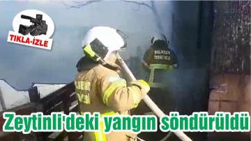Zeytinli'deki yangın söndürüldü