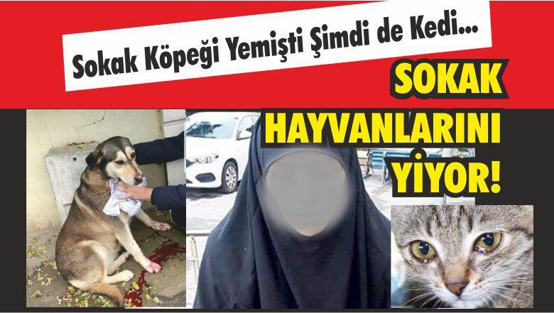 Kedi Köpek Yiyen Kadın Yakalandı