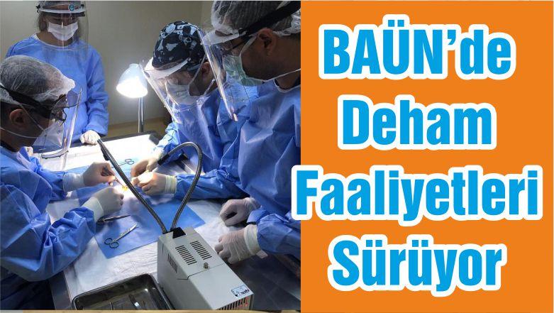 BAÜN'de Deham Faaliyetleri Sürüyor