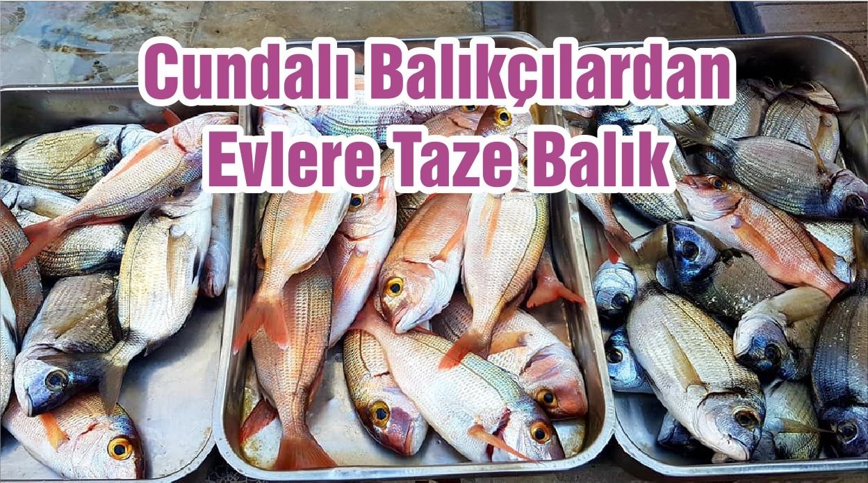 Cundalı Balıkçılardan Evlere Taze Balık