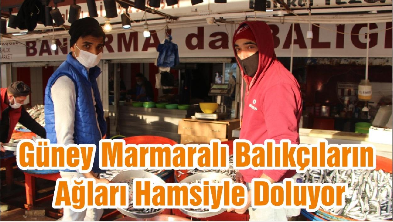 Güney Marmaralı Balıkçıların Ağları Hamsiyle Doluyor