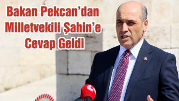 Bakan Pekcan'dan Milletvekili Şahin'e Cevap Geldi