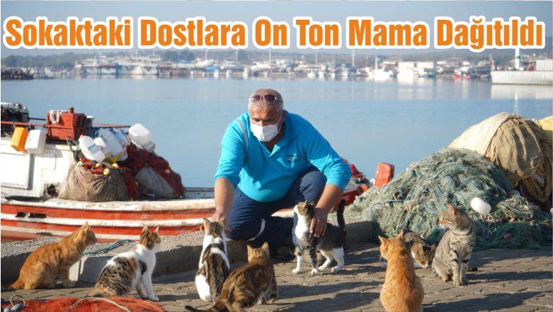 Sokaktaki Dostlara On Ton Mama Dağıtıldı