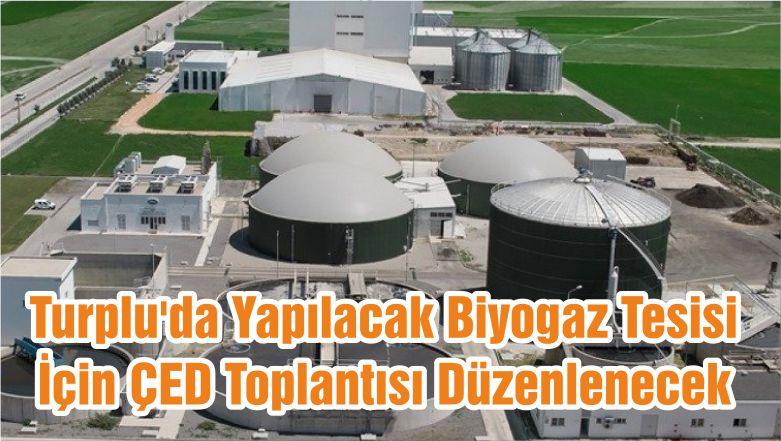 Turplu'da Yapılacak Biyogaz Tesisi İçin ÇED Toplantısı Düzenlenecek