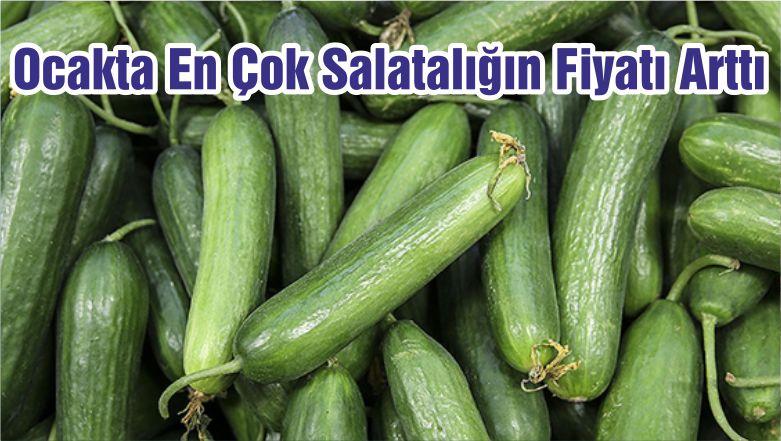Ocakta En Çok Salatalığın Fiyatı Arttı