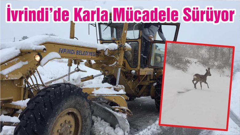 İvrindi'de Karla Mücadele Sürüyor