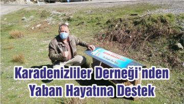 Karadenizliler Derneği'nden Yaban Hayatına Destek