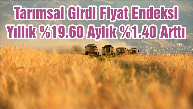 Tarımsal Girdi Fiyat Endeksi Yıllık %19.60 Aylık %1.40 Arttı