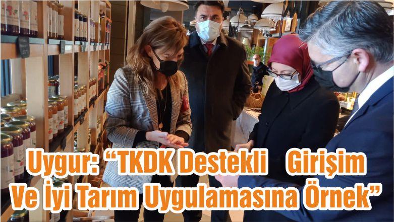 """Uygur: """"TKDK Destekli Girişim Ve İyi Tarım Uygulamasına Örnek"""""""