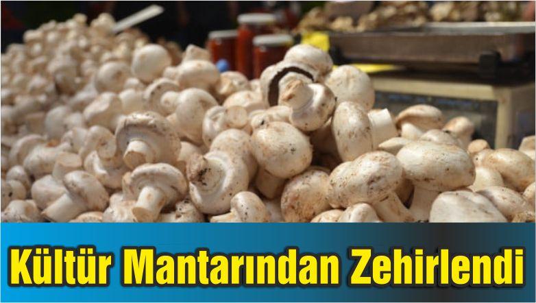 Kültür Mantarından Zehirlendi