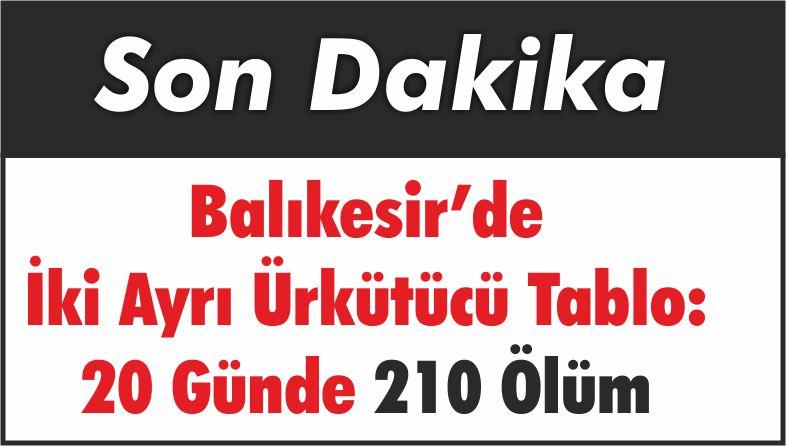 Balıkesir'de İki Ayrı Ürkütücü Tablo: 20 Günde 210 Ölüm