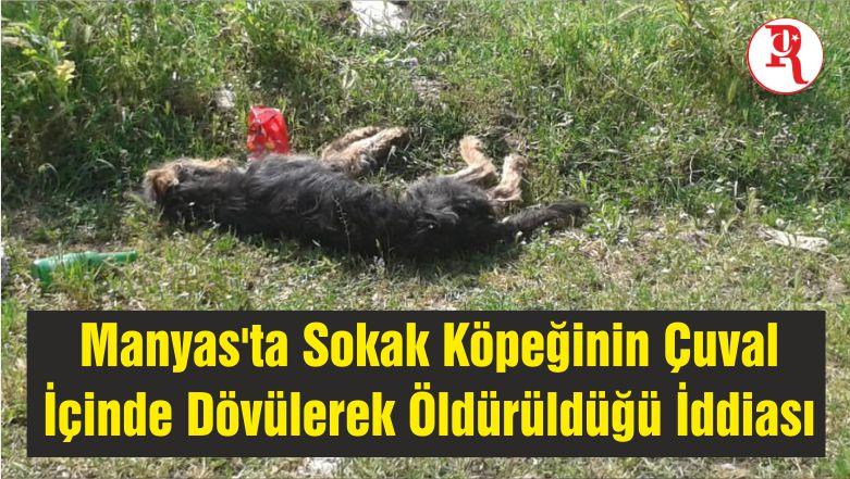 Manyas'ta Sokak Köpeğinin Çuval İçinde Dövülerek Öldürüldüğü İddiası