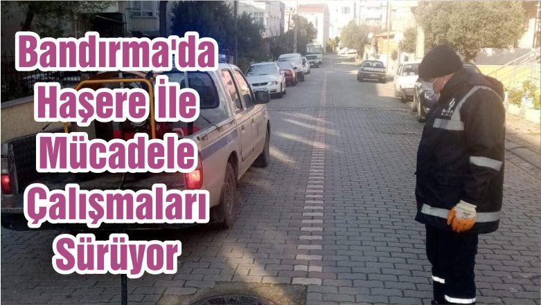 Bandırma'da Haşere İle Mücadele Çalışmaları Sürüyor