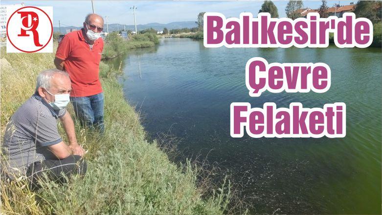 Balıkesir'de Çevre Felaketi