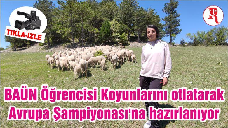 BAÜN Öğrencisi Koyunlarını otlatarak Avrupa Şampiyonası'na hazırlanıyor