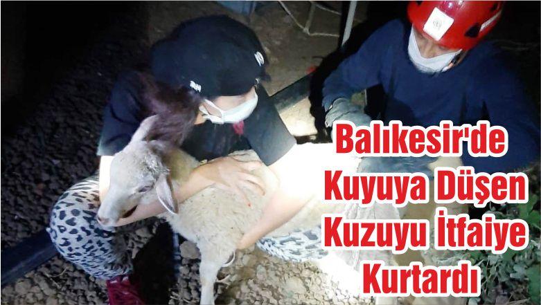 Balıkesir'de Kuyuya Düşen Kuzuyu İtfaiye Kurtardı