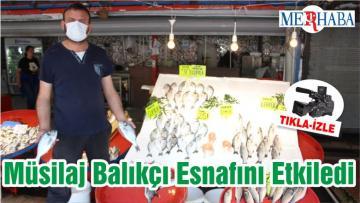 Müsilaj Balıkesir'de Balıkçı Esnafını Etkiledi